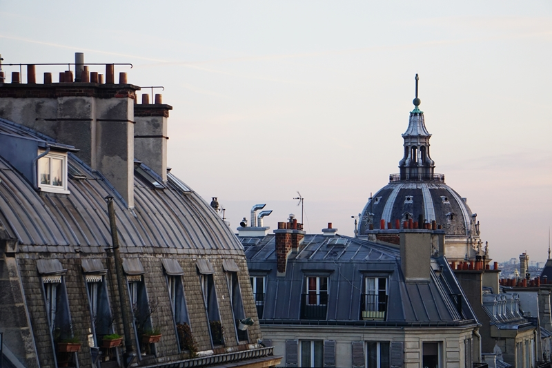 Paris_rooftops