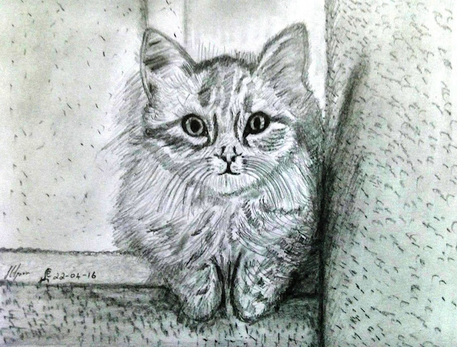 ORIGINAL DRAWING FOR SALE - CAT
