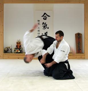 Aikido Throws