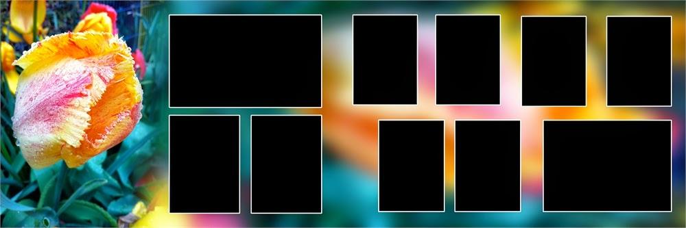 Image Result For Indian Karizma Album Design X Psd Templates In