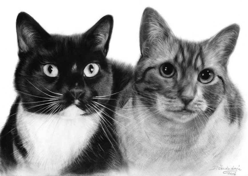07-Dinner-Time-Danguole-Serstinskaja-Paintings-of-Cats-that-look-like-Photographs