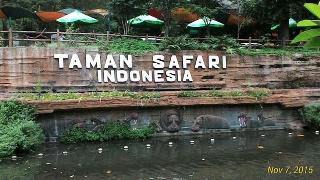Wisata Taman Safari Indonesia Tempat wisata keluarga yang memiliki nuansa dan lingkungan difokuskan pada pemahaman dan satwa liar pada habitat yang ada di alam. Taman Safari Indonesia terkenal oleh para wisatawan asing maupun lokal terutama wisatawan dari timur tengah banyak yang berkunjung ke sini.