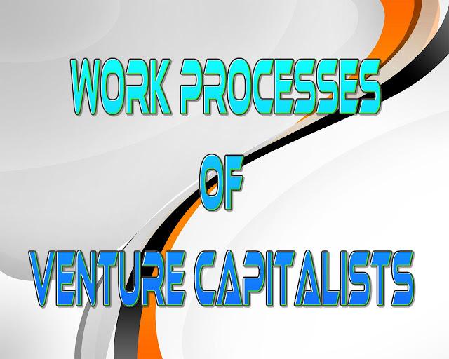 Work processes of Venture Capitalists