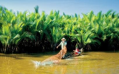 Image result for thiên nhien nam bộ