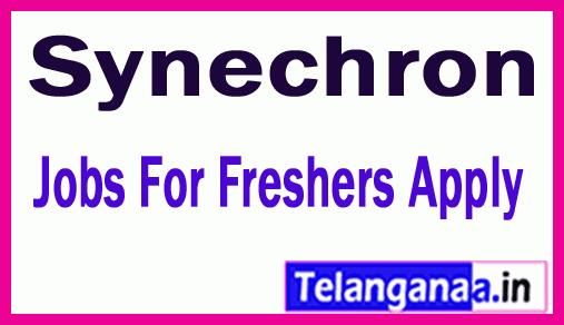 Synechron Recruitment Jobs For Freshers Apply