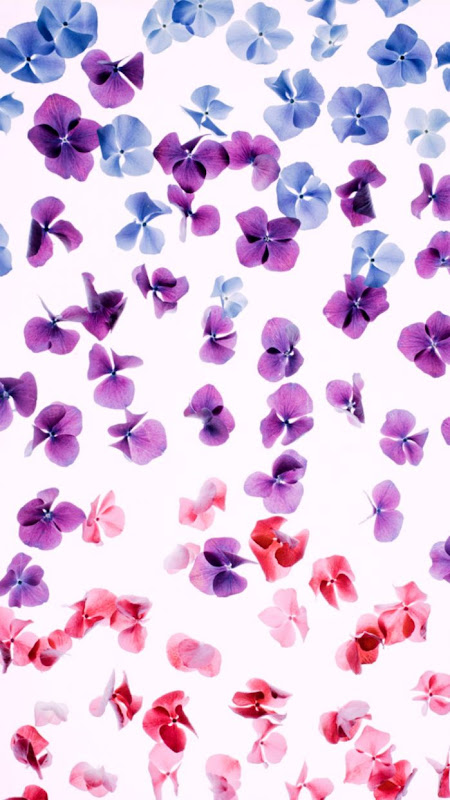 Girly Purple Iphone Wallpaper Wallpapers Master