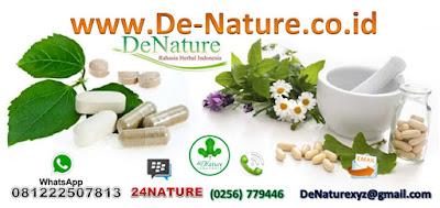 Hasil gambar untuk de-nature.co.id