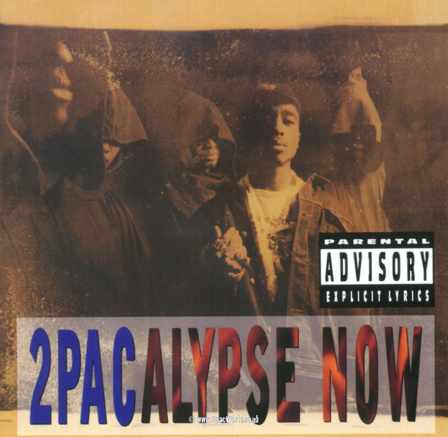 tupac shakur essay essay finding the experience of a w flaneur  the rise and fall of tupac shakur a tupac artifact