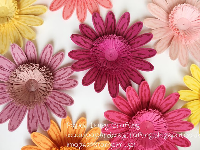 Qullled fringed flowers with daisy delight from Stampin Up
