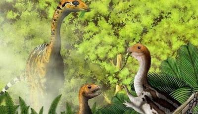Dinosaurus Menjadi Ompong Saat Sudah Dewasa