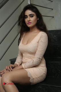 Telugu Actress Model Sony Charishta Stills in Short Dress at Rapture 2017 Grand Logo Launch  0098.JPG