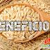 Arroz Integral! Benefícios Desse Alimento Para Saúde