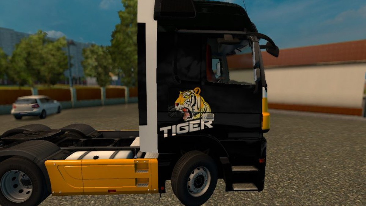 MP3 Tiger Skin