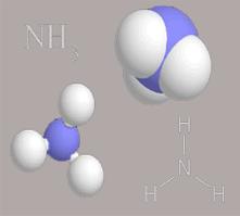 Amonia