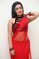 Aasma Syed in Red Saree Sleeveless Black Choli Spicy Pics ~  Exclusive Celebrities Galleries 076.jpg