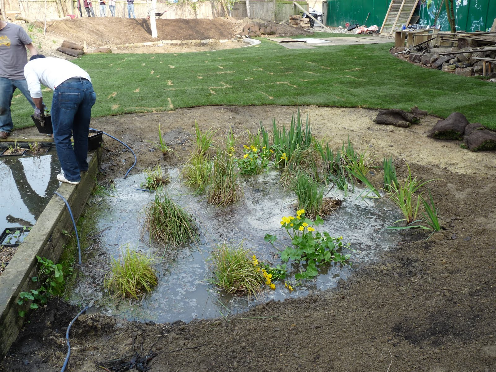 Building Small Pond