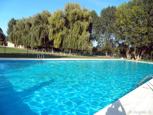 La piscina rodeada de césped y frondosos árboles