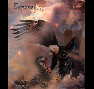 A Powerful Eagle by Deborah Waldron Fry