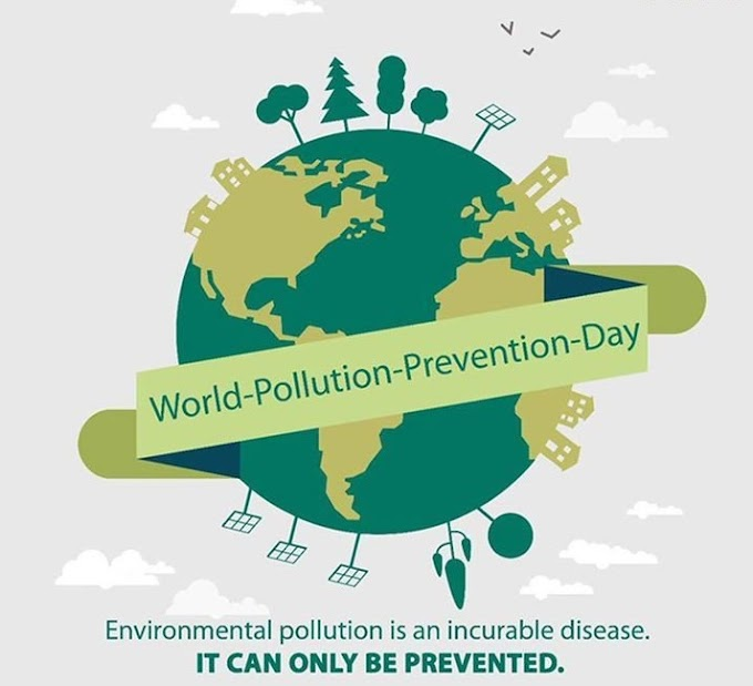 What is World pollution prevention Day?