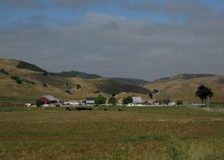 Dairy farm near Fallon, California