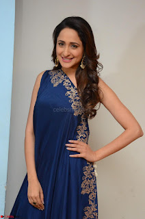Pragya Jaiswal in beautiful Blue Gown Spicy Latest Pics February 2017 031.JPG