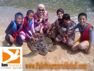 Pulau Penyu - Turtle Island Watersport Tanjung Benoa