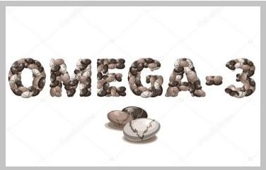 la chia contiene omega3