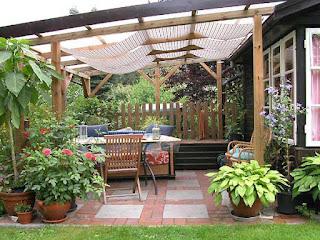Télikert terasz beépítés növények