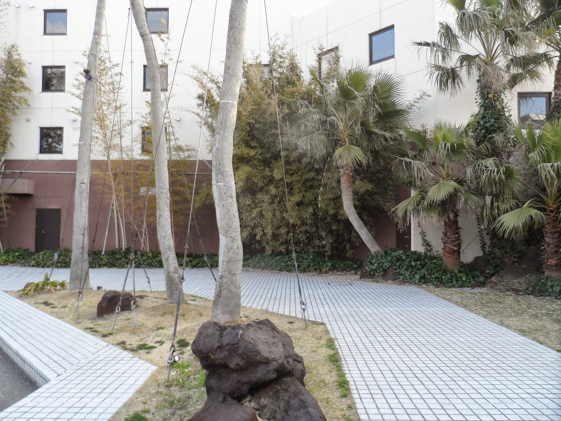 Tiled pavement with trees and palms