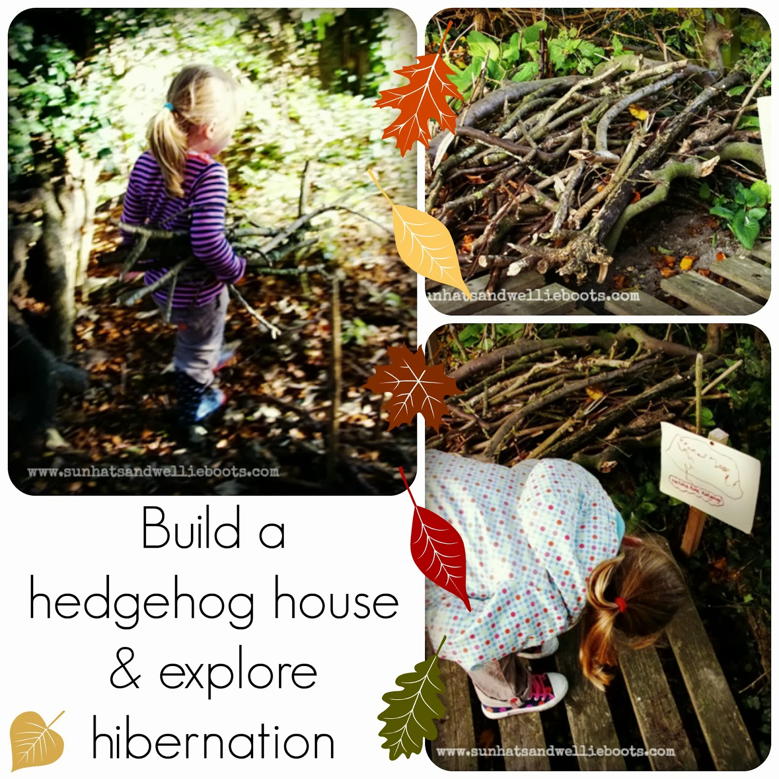 Sun Hats Amp Wellie Boots Build Your Own Hedgehog House