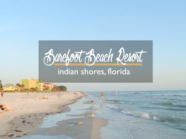 Barefoot Beach Resort, Indian Shores, Florida: A Review | CosmosMariners.com