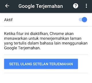 Screenshot seting terjemahan otomatis google