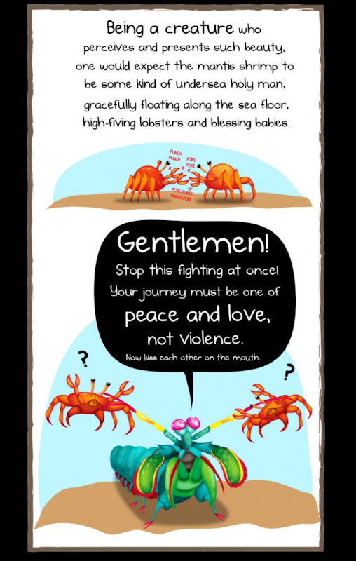 Mantis Shrimp The Oatmeal Wallpapers Comp