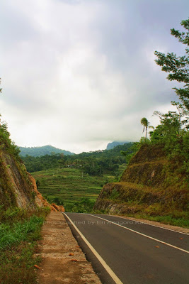 Beautiful scenery, paddy field and the hill along the road