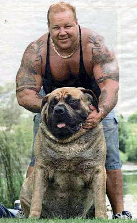 largest dog - photo #23