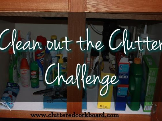 Clean out the Clutter Challenge Week #2  (part 2)