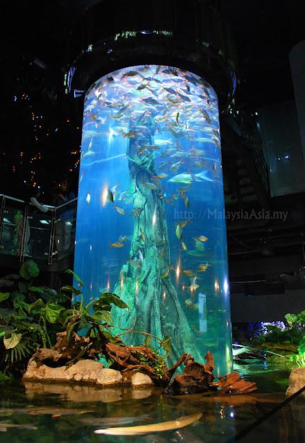 KLCC Aquaria Kuala Lumpur