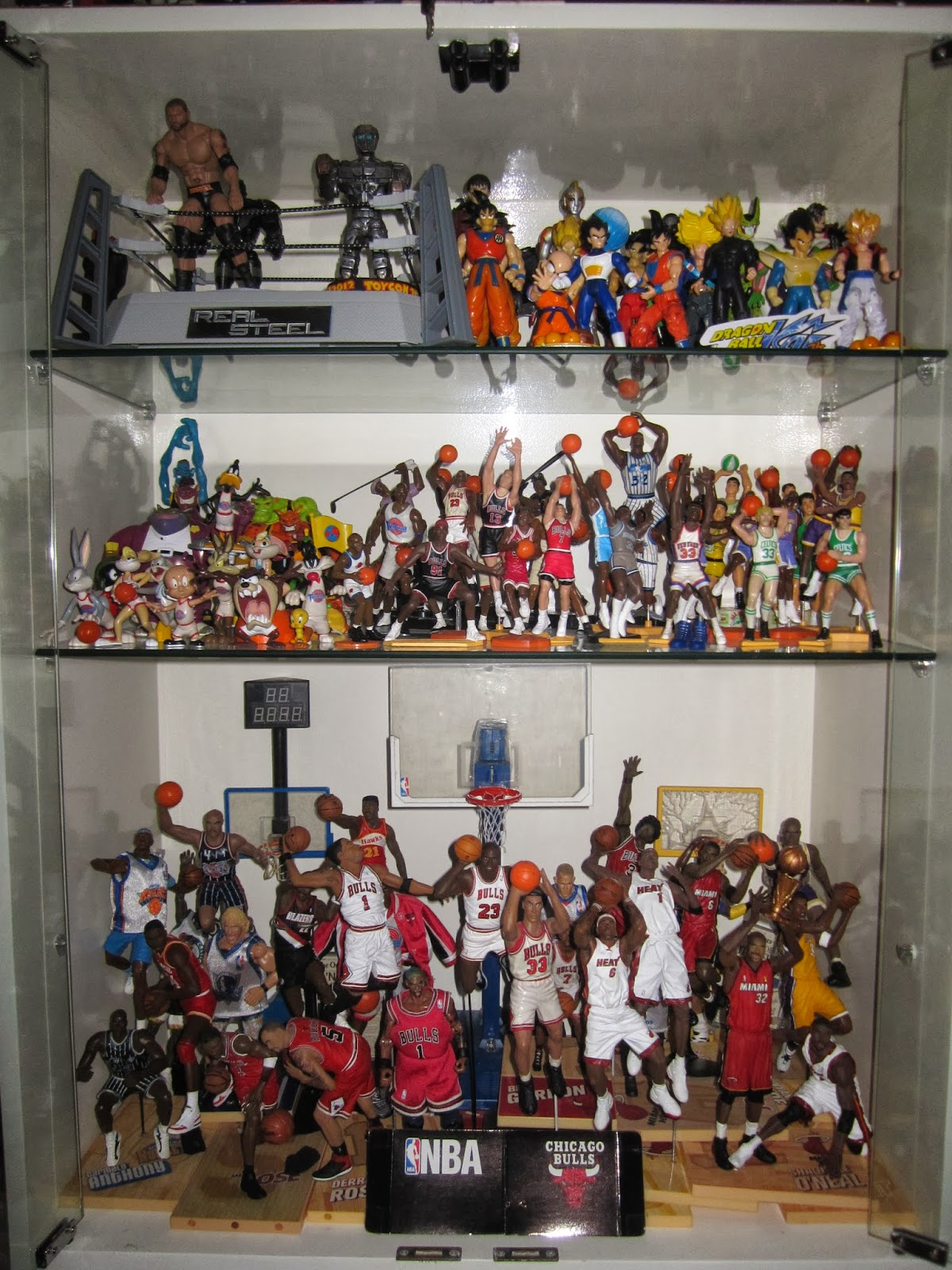 80 Toy Action Figure Shelves - IMG_8707_Best 80 Toy Action Figure Shelves - IMG_8707  Image_281881.JPG