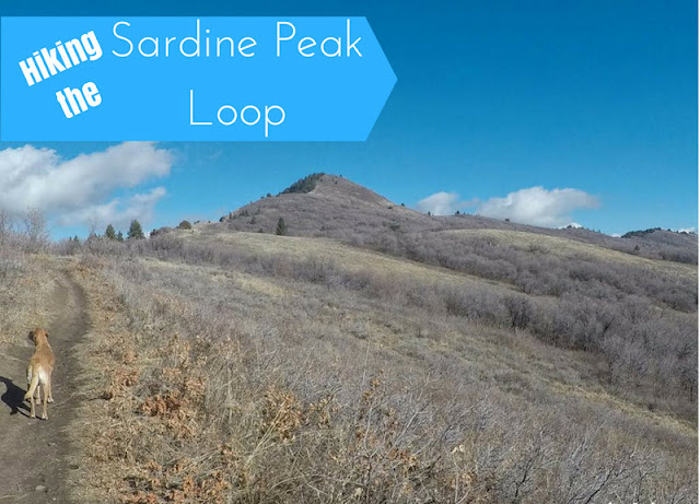 Hiking the Sardine Peak Loop, Snowbasin