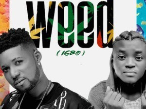 MUSIC: HDesign x Portable – Weed (Igbo)