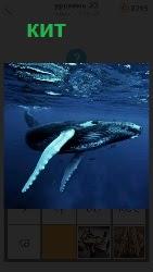 460 слов 4 под водой плавает большой кит 23 уровень