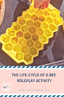 the lifecycle of a bee role play activity