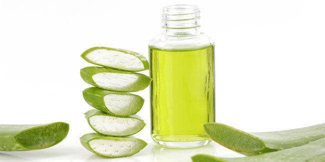 Khasiat Minyak Lidah Buaya Untuk Rambut, Kulit dan Kesehatan