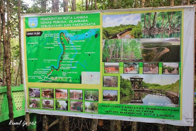 Pesona Wisata Hutan Bakau Titi Hijau Kuala Langsa