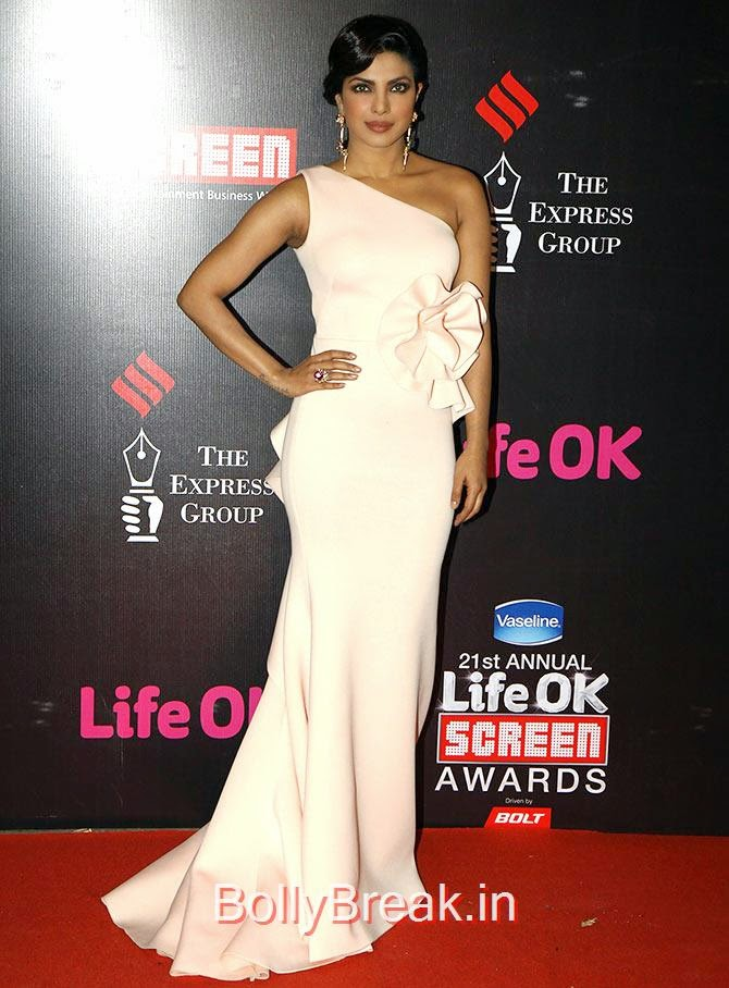 Priyanka Chopra, Life Ok Screen awards 2015 Red Carpet Hot Pics