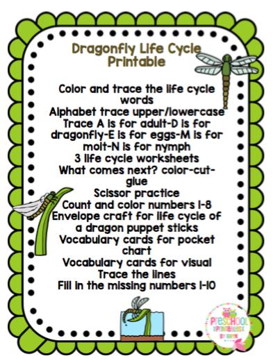 Dragonfly Life Cycle Printable Preschool Printables