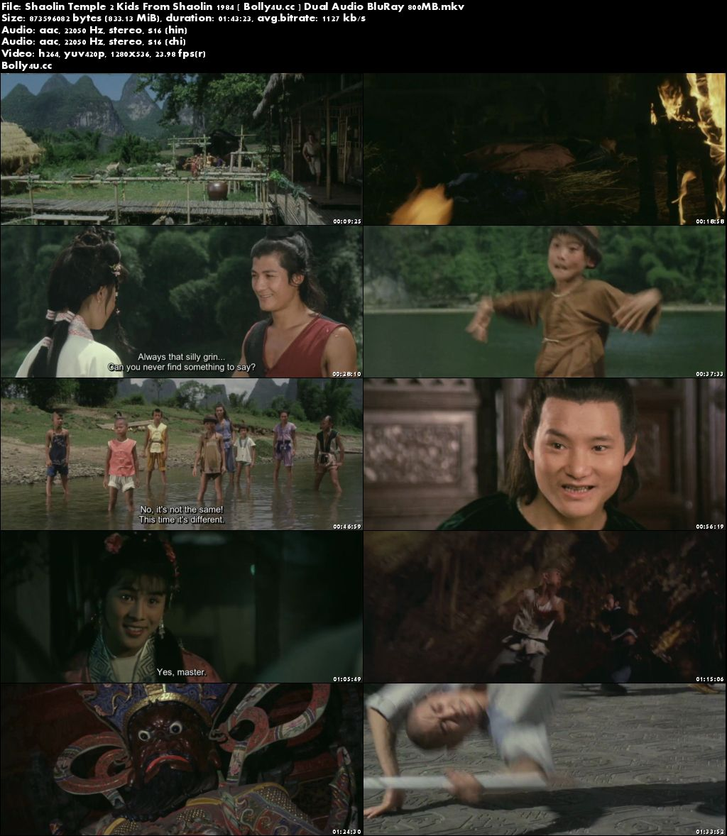 Shaolin Temple 2 Kids From Shaolin 1984 BRRip 350MB Hindi Dual Audio 480p Download