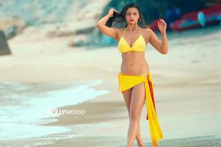 Alia Bhatt Bikini (7)