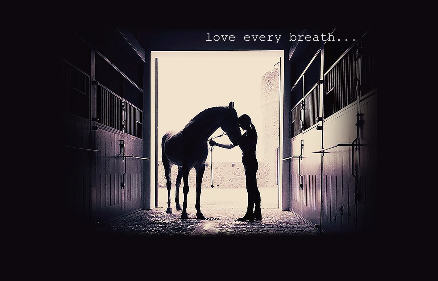 LOVE EVERY BREATH