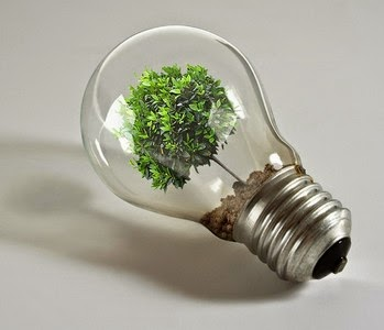 Hal-Hal Yang Perlu Diperhatikan Dalam Memilih Lampu Hemat Energi